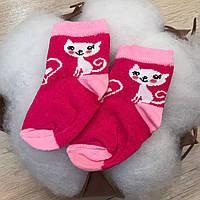 Шкарпетки 1049 Котик