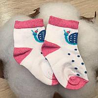Шкарпетки 1051 Равлик