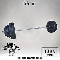 Штанга (1,5 м) + гантелі (35 см)  | 85 кг, фото 2