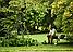 Воздуходувка Greenworks GR2401307, фото 7