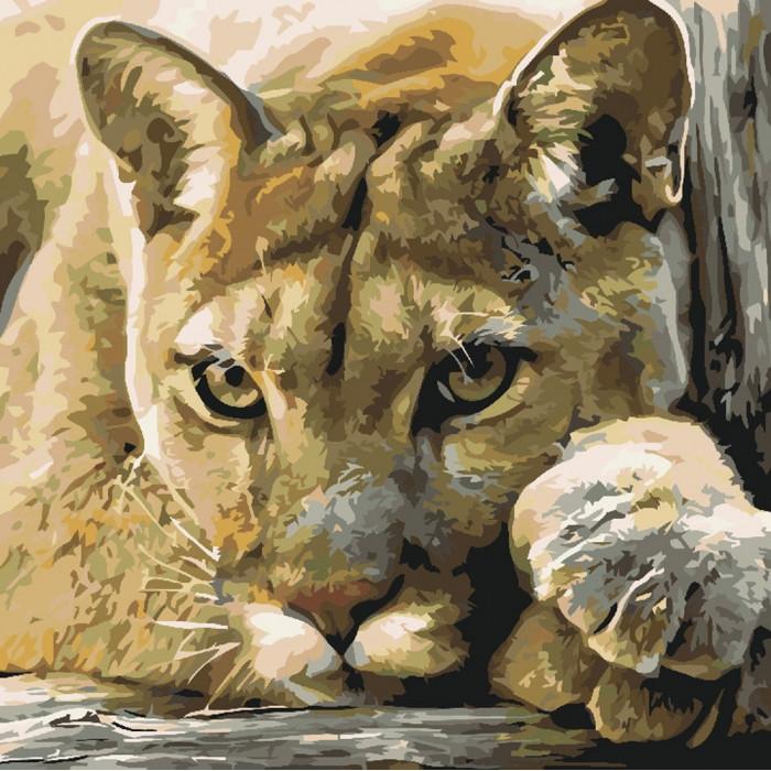 Картина по номерам Хищница, львица 40х40см. КНО2485 Идейка