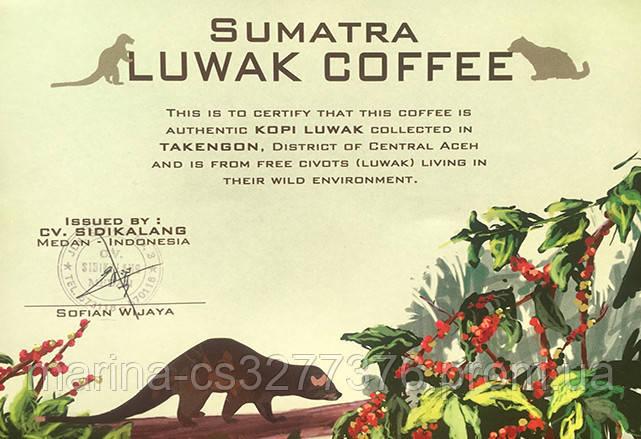 Знаменитый легендарный кофе Копи Лювак от фабрики Montana 100 г шоколадный вкус без кислинки