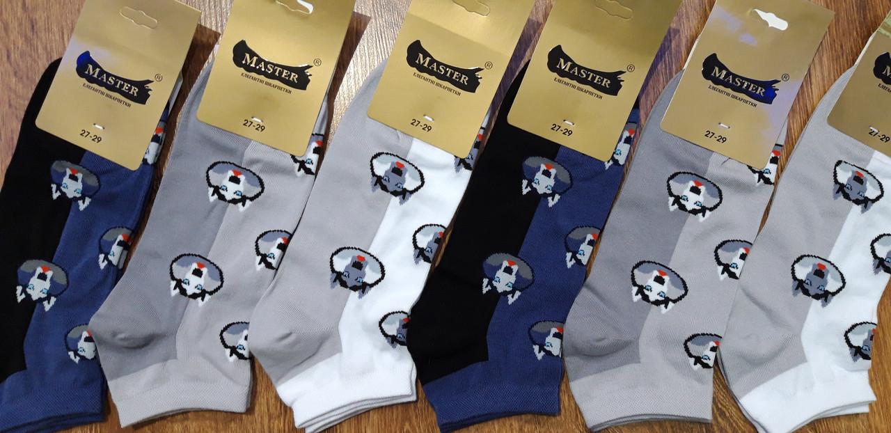 Шкарпетки чоловічі безшовні короткі «MASTER», м.Житомир 27-29(41-44)