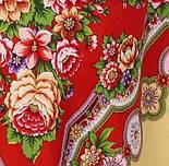 Южное солнце 1652-3, павлопосадский платок шерстяной (двуниточная шерсть) с шелковой бахромой, фото 8