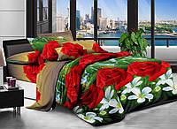3D Полуторное постельное белье Amika водопад
