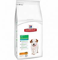 Сухой корм Hills Science Plan Canine Puppy Healthy Development Mini для собак мелких парод, с курицей, 3 кг