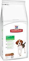 Сухой корм Hills Science Plan Canine Puppy Healthy Development Medium для щенков средних пород, с ягненком и рисом, 1 кг