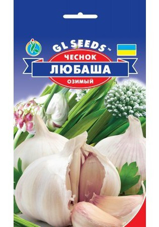 Чеснок озимый Любаша, пакет 10 г - Семена чеснока
