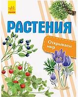 Детская книга Энциклопедия Растения, на русском, 315146