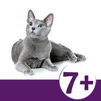 Royal Canin для котов от 7 лет