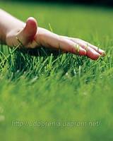 Купить Удобрения для газона Киев. Купить удобрения для газонов Нитроаммофоска. Продам удобрения для газона нит