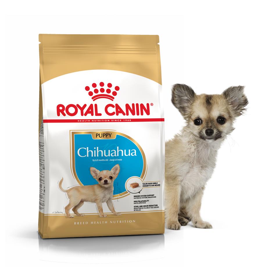 Сухой корм для щенков Чихуахуа Роял Канин Royal Canin CHIHUAHUA PUPPY, 500 г