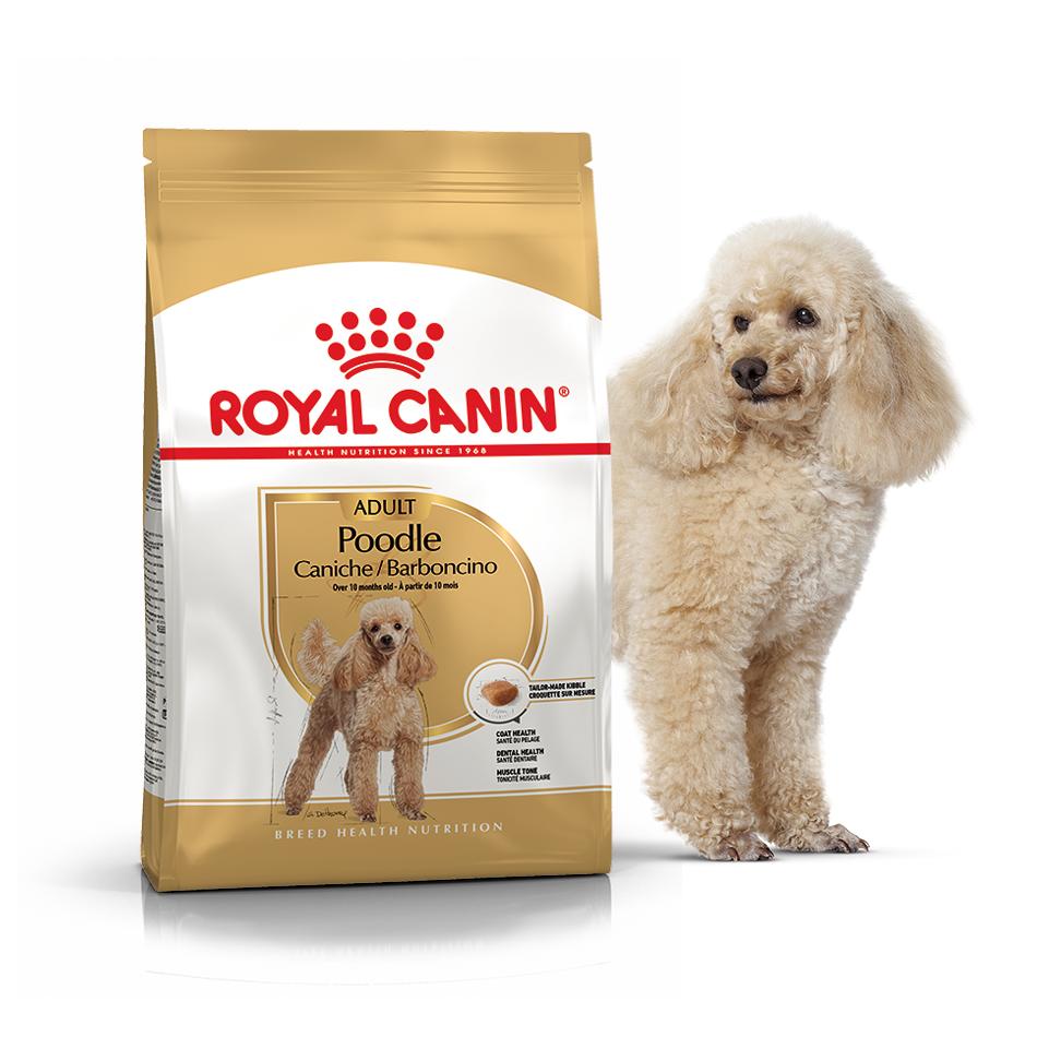 Сухой корм для собак  породы Пудель Роял Канин Royal Canin POODLE ADULT, 1,5 кг