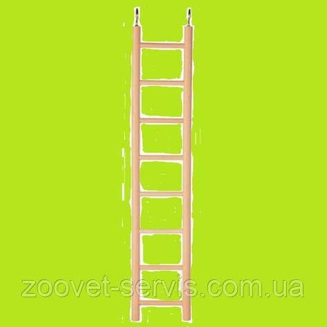 Лестница для попугая TRIXIE 5812 Размер: 24см, фото 2