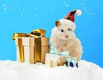 Компанія Elmisto вітає з Новим Роком та Різдвом Христовим!