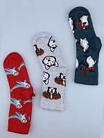 Носки детские  для мальчика высокие демисезонные с рисунком Bross (животн.)