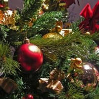 Искусственная или живая? Какую елку выбрать на Новый год?