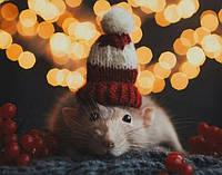 Подарки на год крысы: идеи на Новый Год от Souvenir-Trade