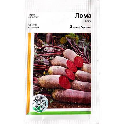 """Семена свеклы столовой, урожайной """"Лома"""" (3 г) от Rijk Zwaan, Голландия, фото 2"""