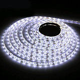 LED лента 5м, 12V, 360-ламп., фото 2