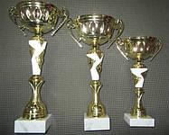 Кубки спортивные. www.ritm-sport.com, тел: +38095-331-93-93