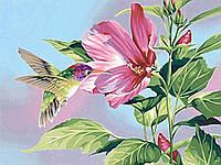 """Алмазная вышивка """"Колибри на цветке"""",полная выкладка, ,мозаика 5d, наборы 45x35 см"""