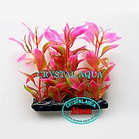 Растение Атман H-052T6, 10см