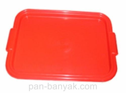 Поднос Гемопласт  44,5х32 см пластик (Г)