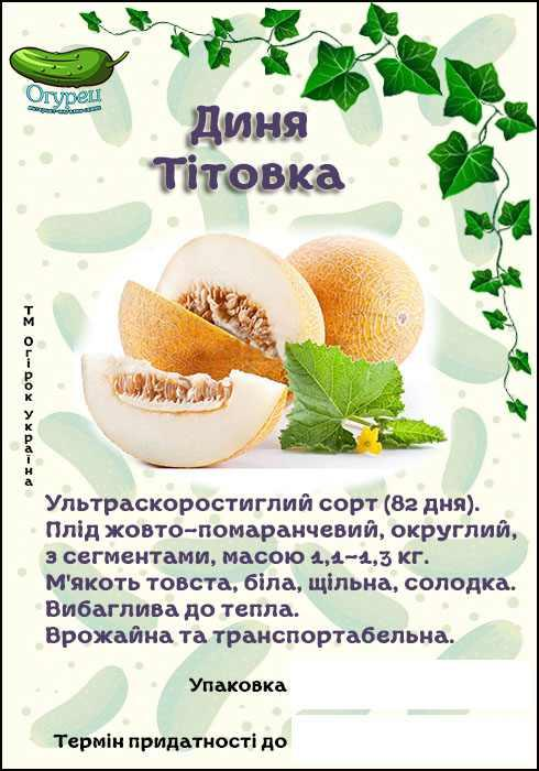 Дыня Титовка (ОГ)
