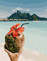 """Картина по номерам BrushMe Премиум """"Кокосовые Мальдивы"""" 40х50 см без упаковки PGX28164"""