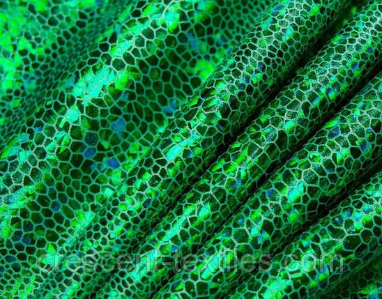 Бифлекс с Напылением Глограм Чешуя (Трава), фото 2