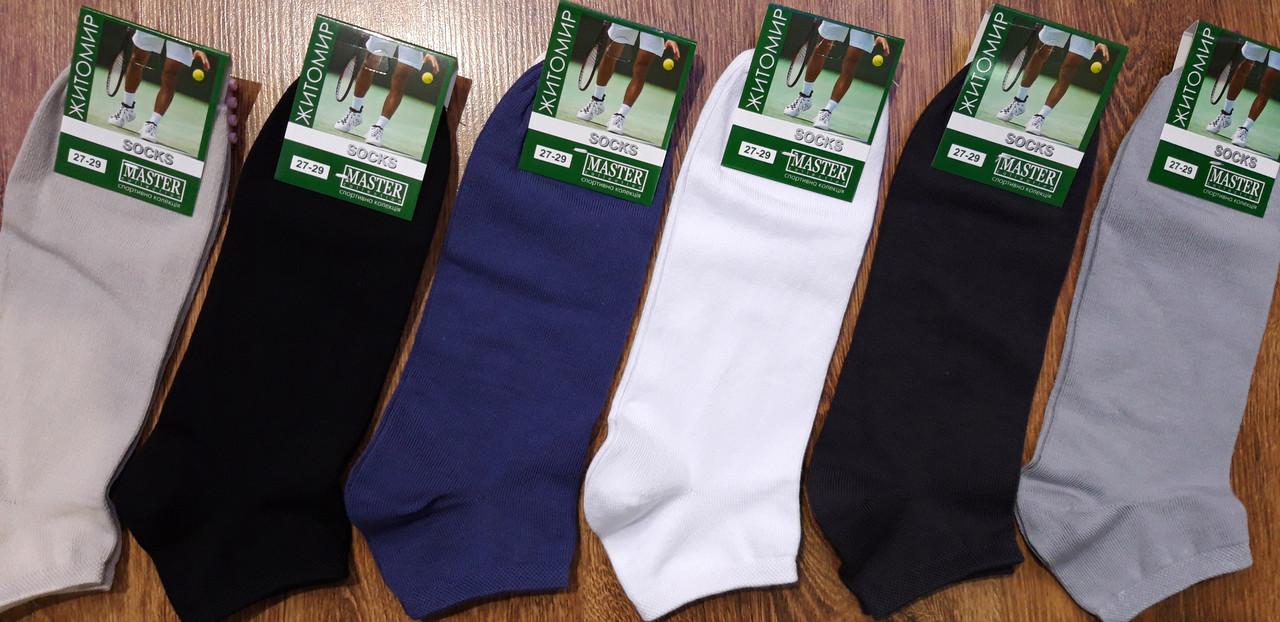 Шкарпетки чоловічі короткі,стрейчеві «MASTER», м.Житомир 27-29(41-44)