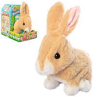 Интерактивная мягкая игрушка Зайчик МР 2584 17 см, звук, ходит, шевелит ушками.