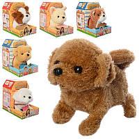 Интерактивная мягкая игрушка Собачка МР 2585 6 видов, ходить, 17см, звук