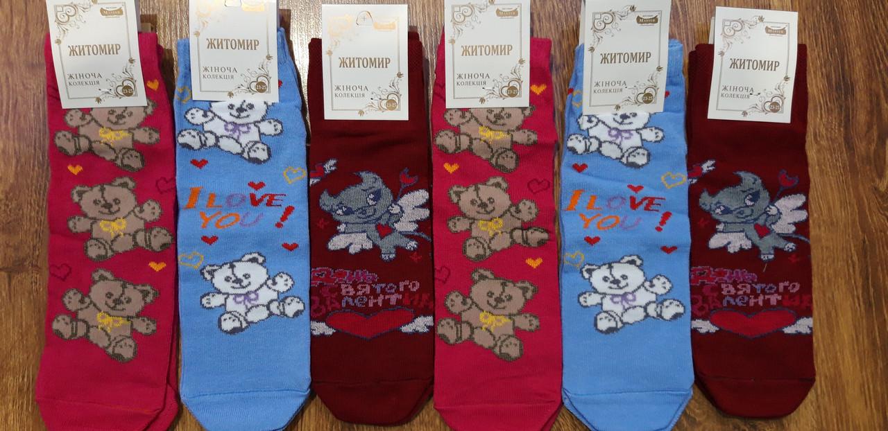 Шкарпетки жіночі стрейчеві,бавовна «MASTER», м.Житомир 23-25(36-41)
