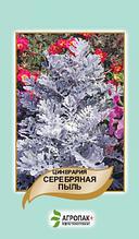 Цинерария Серебрянная пыль 0,1 г
