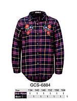 Рубашка для девочек, Glo-story, 134,140,146,152 см,  № GCS-6884