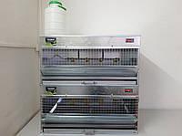 Брудер Prime для обогрева цыплят, бройлеров, перепелов ( 2 яруса)