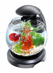 Аквариумный набор Tetra Cascade Globe 6.8 л для петушка и золотой рыбки Черный