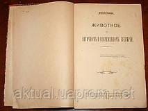 Антикварная книга Животное в античном и современном суеверии. В. Клингер