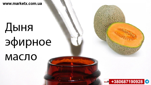 10мл Дыня канталупа эфирное масло