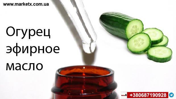 10мл Огуречное эфирное масло, фото 2