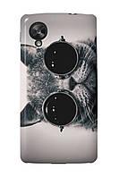 Чехол для LG Google Nexus 5 (Кот в очках)