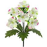 Букет орхидеи с подкустником, 30см(24 шт. в уп), фото 2