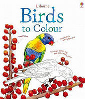Книга Birds to Colour