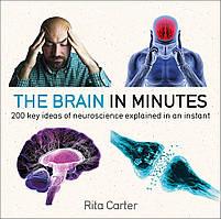 Книга The Brain in Minutes