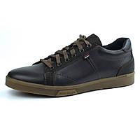 Кожаные кроссовки коричневые мужская обувь больших размеров кеды Rosso Avangard Puran Aircross Brown BS