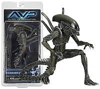 Фигурка NECAЧужой Warrior AlienSeries 10 AVPAJ 24.064
