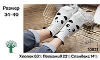 Носки Caramella - низкие - белые, панда, с ушками, фото 1