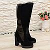 Сапоги женские   замшевые на высоком каблуке, декорированы лаковой вставкой., фото 2